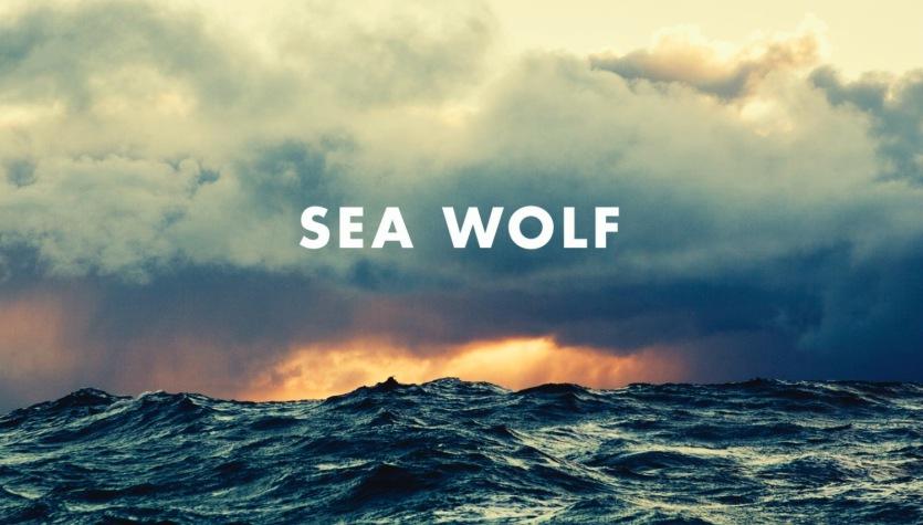 Biraz Da Müzik: Sea Wolf Grubundan Old Friend